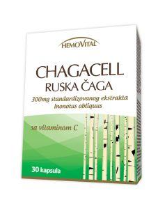 Ruska čaga 30 kapsula